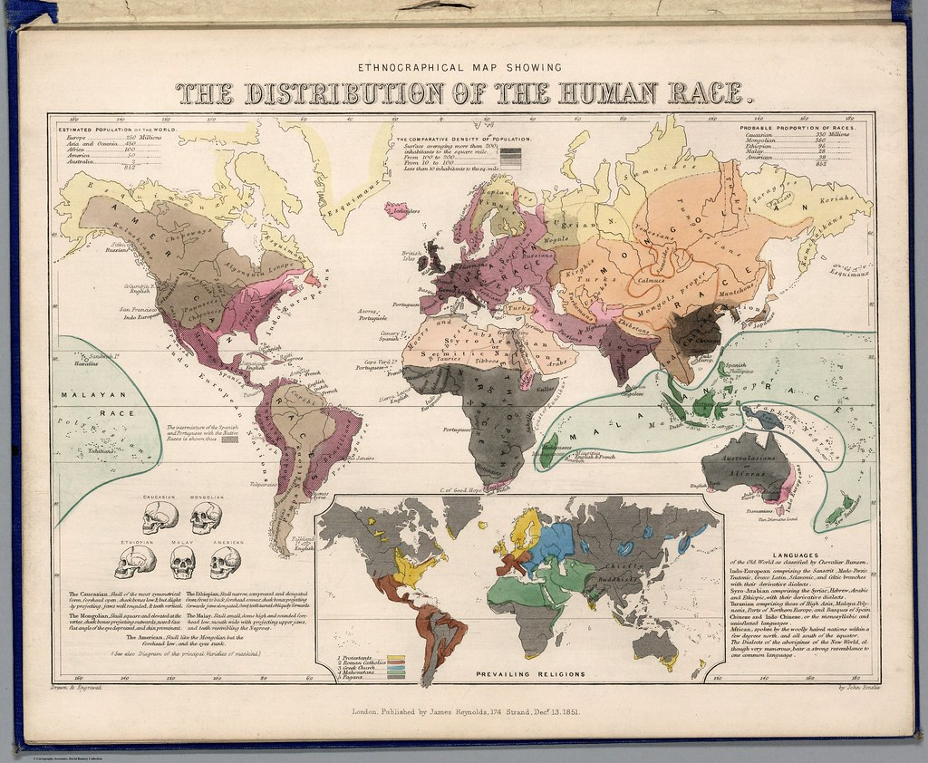 The distribution of the human race