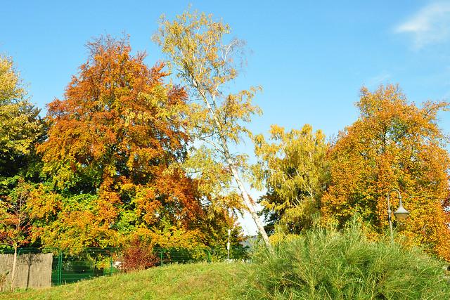 Herbst - Der Kurpark von Bad Dürkheim im Oktober 2017 - Fotos: Brigitte Stolle