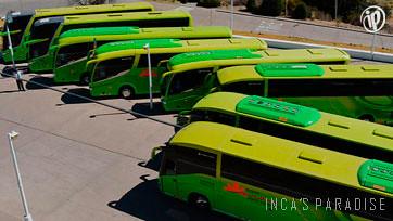 Flota de buses