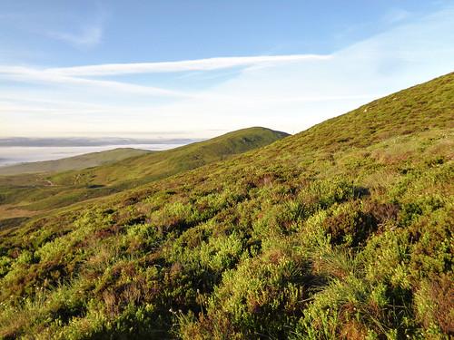 Heather bashing on the slope of Craig yr Hafod