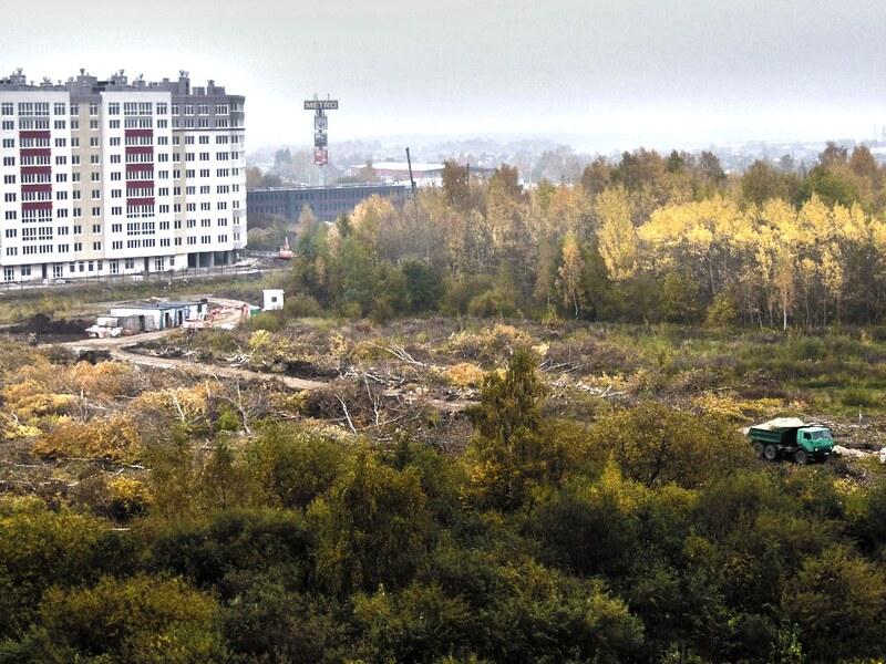 Вырубка леса на Аксакова, ЖК Восток
