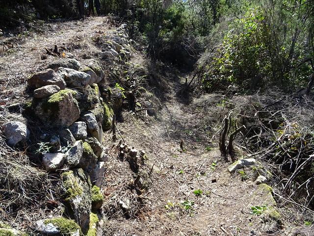 Le Chemin d'exploitation du Carciara en RG de la Figa Bona : les soutènements imposants au niveau du chemin annexe