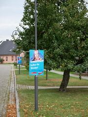 Wahlplakate zur Bundestagswahl #1