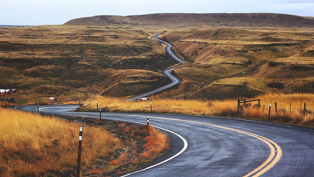 winding road long term expected returns white papers