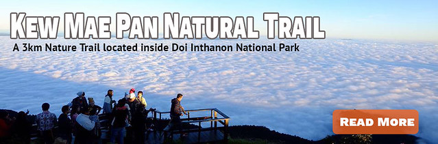 Link Kew Mae Pan Natural Trail
