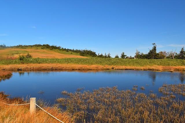 苗場山 湿原の池塘