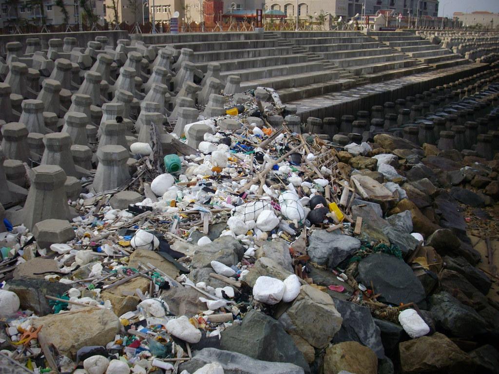 7 減少海洋廢棄物與水下噪音的衝擊是海洋與海岸保育的重要工作