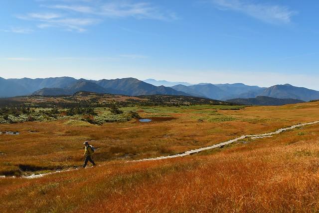 秋の苗場山登山 草紅葉の広大な湿原風景