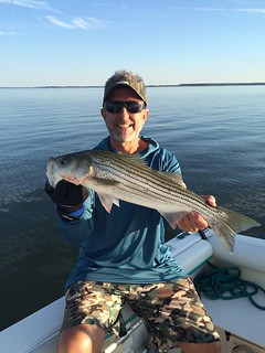 Photo of angler Herb Floyd holding a Striped Bass