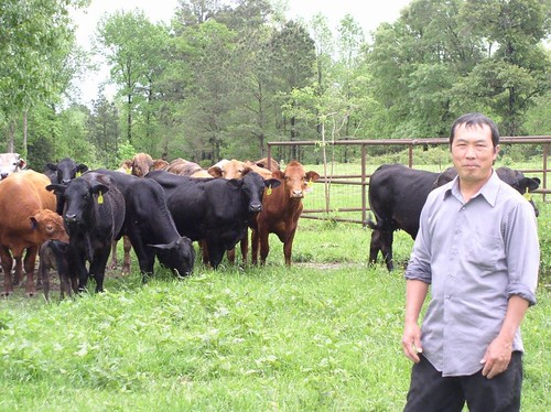 Koua Thao used a USDA Microloan to diversify his breeder hen operation by purchasing livestock.