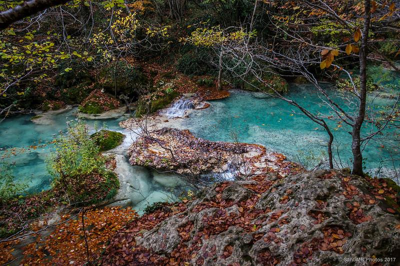 Gour en el río Urederra