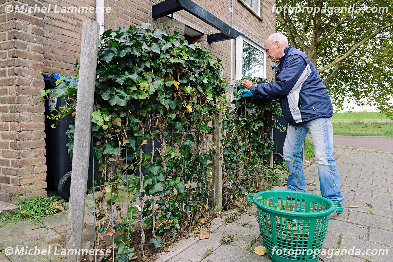 Tuin-oprruimactie Kruidenbuurt