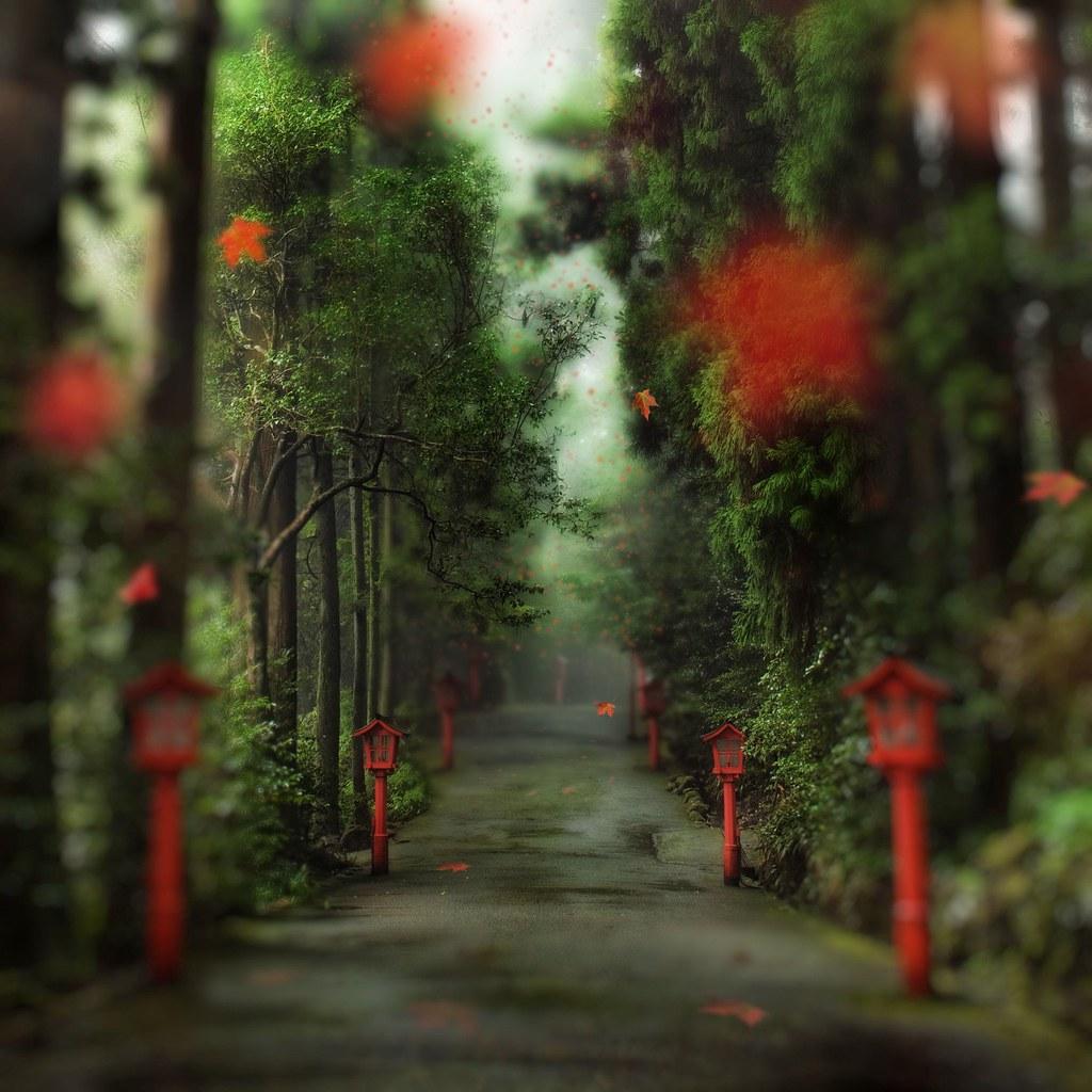 Japan - Trey Ratcliff - 05