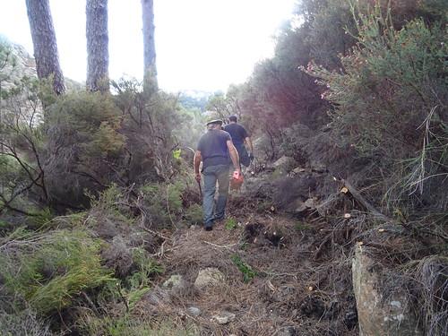 Remontée du chemin démaquisé vers le Castedducciu : diverses vues du chemin
