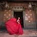 台北婚紗/自助婚紗/婚紗/板橋林家花園/陽明山/David+Connie