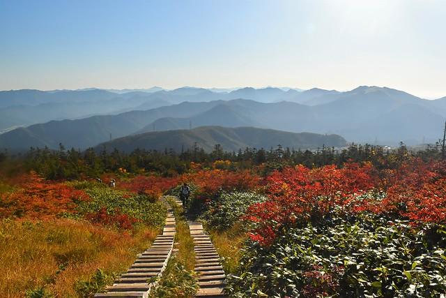 苗場山登山 紅葉と木道と谷川連峰の展望