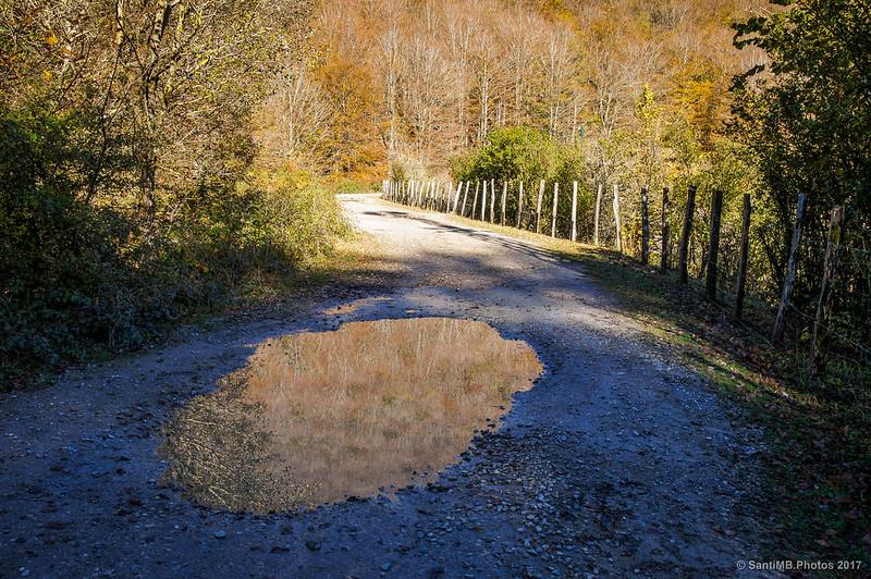 Camino que rodea el Lago Lareo