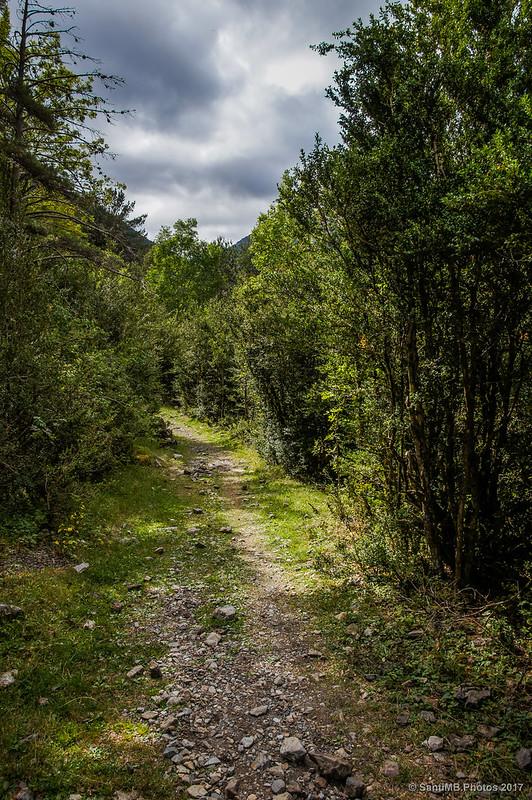 Camino de la Pleta del Pago