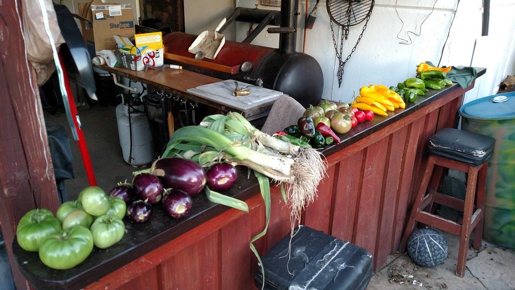 My Compost Bin 37846945042_a16a145ee7_b