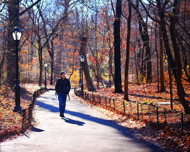 Caminando por Central Park bajo los colores del Otoño de Nueva York