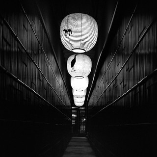 Kyoto - Path to Enlighten You | by * Daniel *