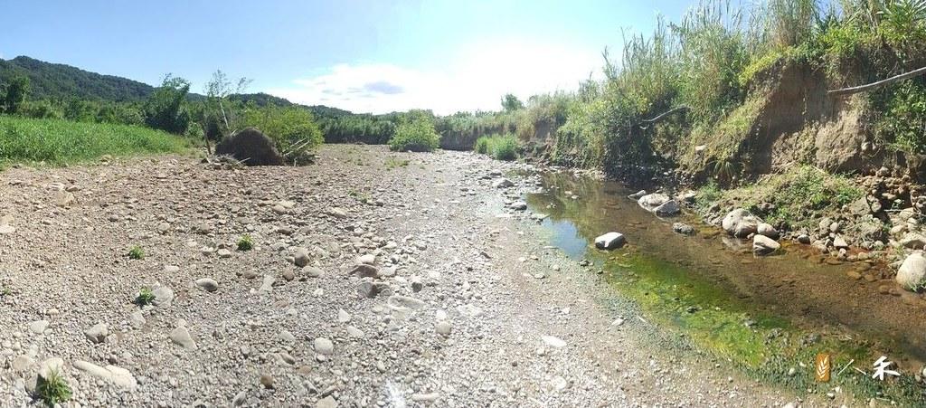 夏天旱季讓許多小溪出現伏流危機。圖片來源:人禾基金會。