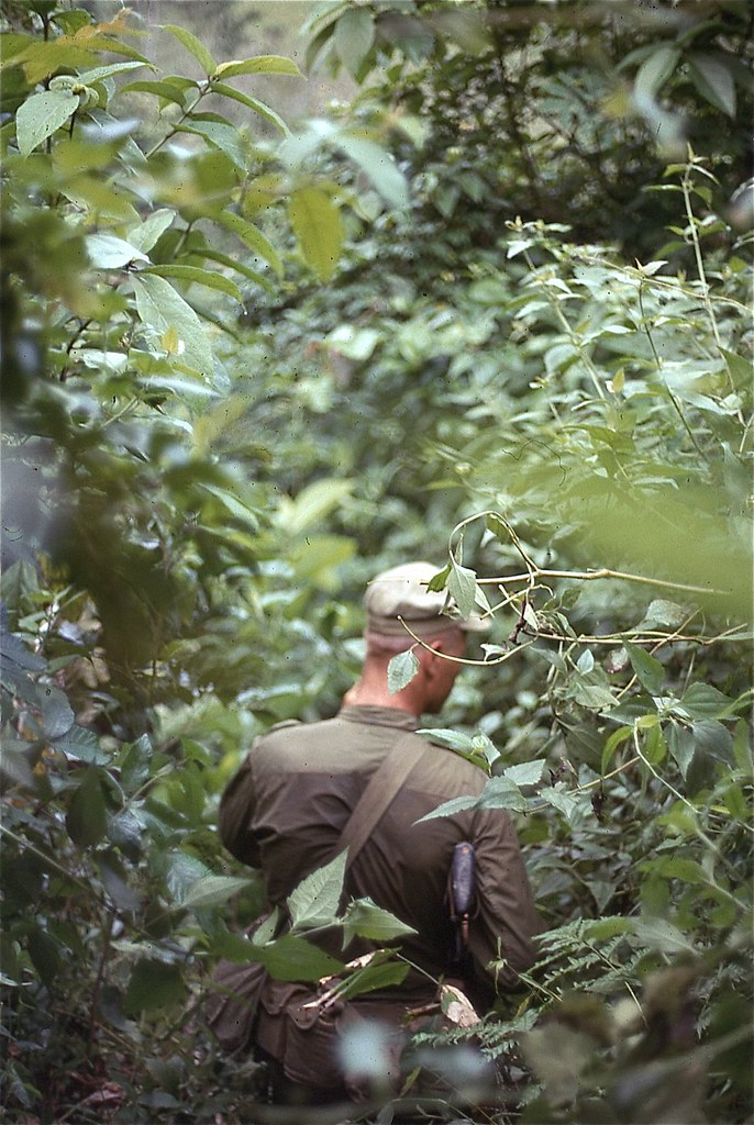 ... Marine on Patrol 1968 | by Archives Branch USMC History Division : triple canopy jungle - memphite.com
