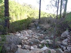 Sur le chemin en RD de la Figa Bona : une nouvelle traversée de ruisseau