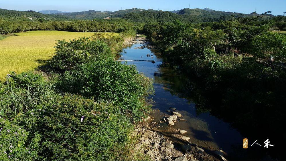 東北角常見河岸農田貼著小溪的景象。圖片來源:人禾基金會。
