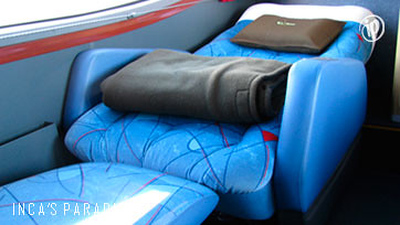 Interior del bus