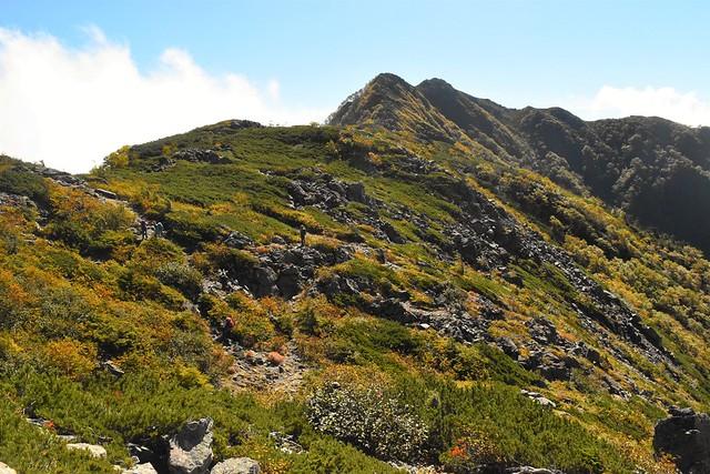 栗沢山~アサヨ峰の稜線の紅葉