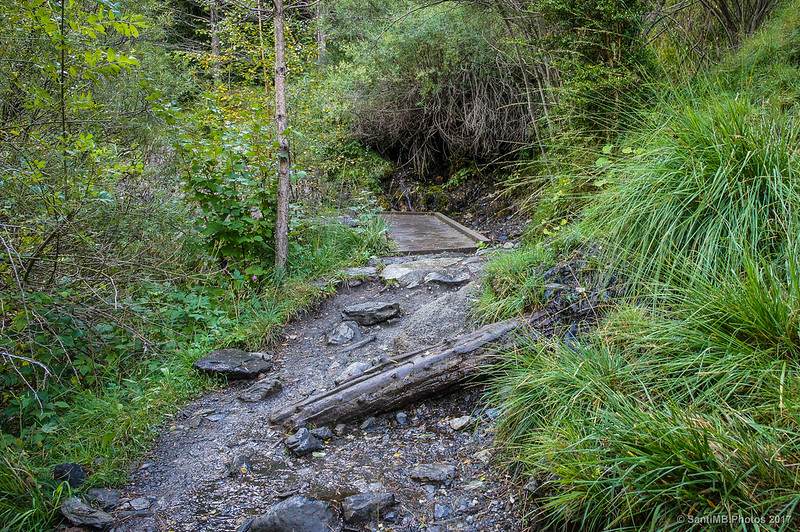 Pequeño torrente o manantial en la Ruta de la Nutria