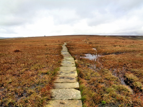 Heading along the stone slabs to Brown Knoll