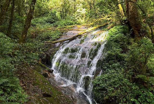 Mae Pan Waterfall