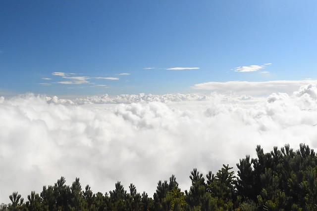 南アルプス栗沢山からの雲海