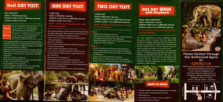 Elephant Jungle Sanctuary Chiang Mai Thailand Brochure 3