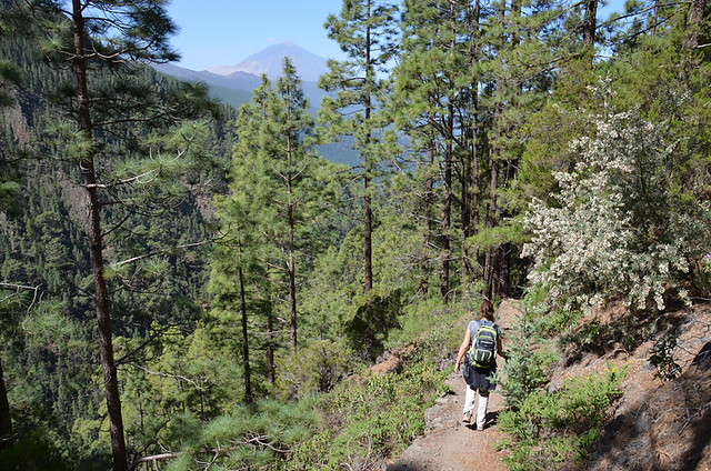 Walking in Orotava Valley, Tenerife