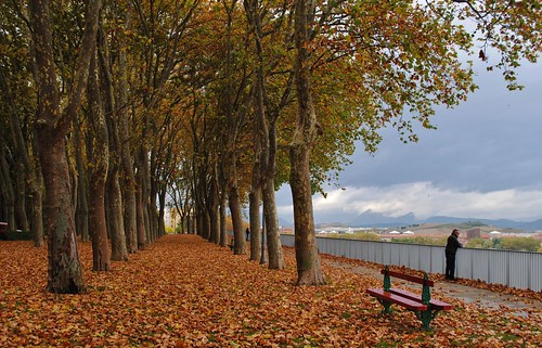 Autumn colours in Pamplona | by Pikes On Bikes