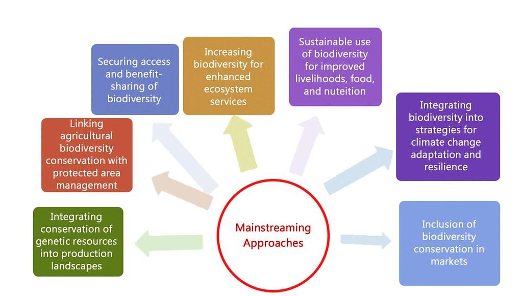 9 生物多樣性主流化涉及許多面向的工作2
