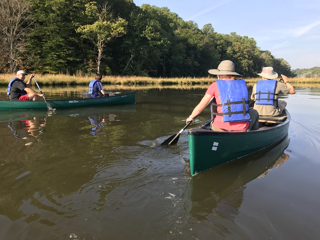 Photo of paddling in Calvert County