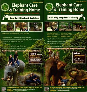 Eddy Elephant Chiang Mai Thailand Brochure 3