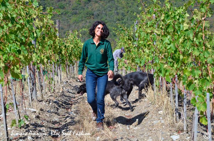 A enóloga Cecilia Leoneschi e os seus fieis cachorros, Rock e Jazz, nos guiando no vinhedo. Grazie Cecilia, lei é molto gentile.