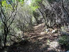 La première partie du chemin depuis le ruisseau de Peru