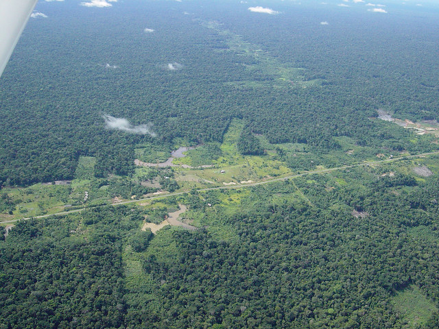 Aerial photograph of Amazon rainforest