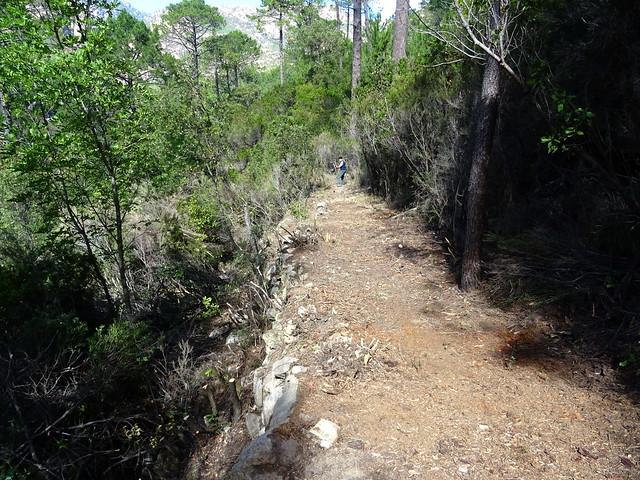 Le Chemin d'exploitation du Carciara en RG de la Figa Bona : une idée de la largeur du chemin