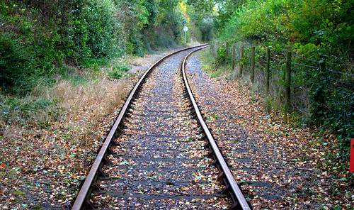 Autumn tracks | by Tony Worrall