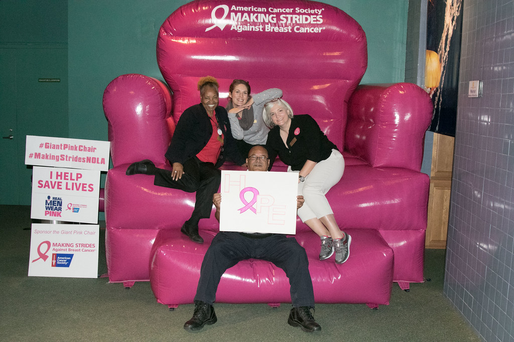 ... Breast Cancer Awareness Big Pink Chair34 | By Audubonimages
