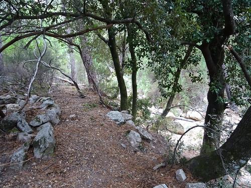 L'extrémité du chemin à l'arrivée au ruisseau de Pinu Neru (le long du cumpulu ?)