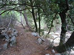 L'extrémité du chemin à l'arrivée au ruisseau de Pinu Neru
