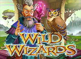 Online Wild Wizards Slots Review